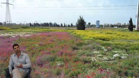 Liav-Shalem